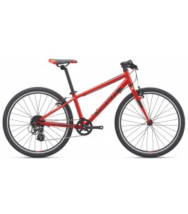 "VTT Junior Giant ARX 24"" 2020"