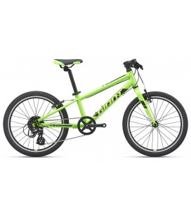 "VTT Junior Giant ARX 20"" 2020"