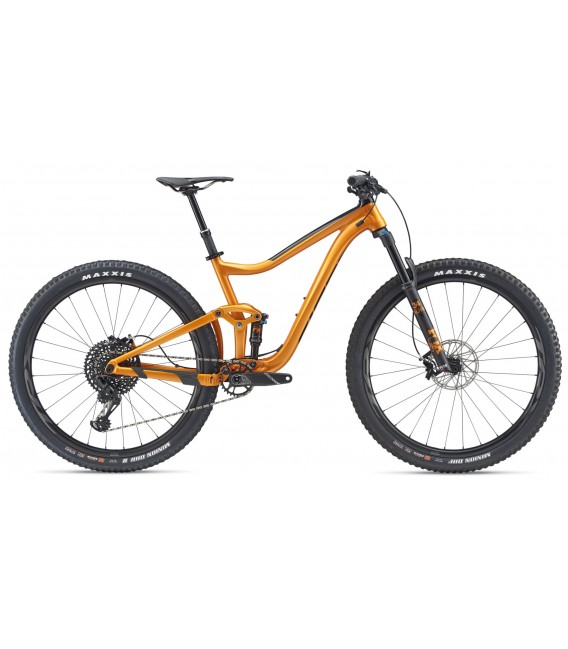 VTT Giant All Mountain Trance 29er 1 2019
