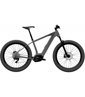 VTTAE Cannondale Trail Neo 3 2020