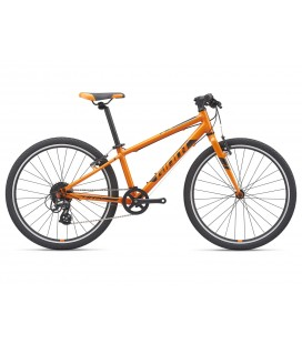 VTT Junior Giant ARX 24 Orange 2021