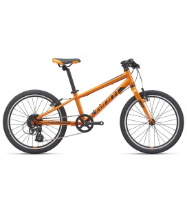 VTT Junior Giant ARX 20 Orange 2021