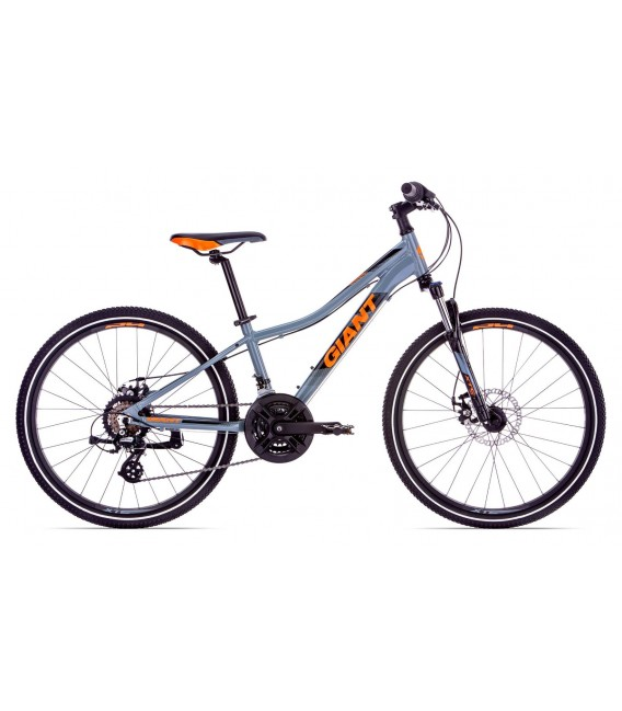 VTT Junior Giant XtC Jr 1 Disc 24 2019
